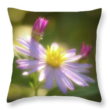 Throw Pillow featuring the photograph Wild Chrysanthemum by Tatsuya Atarashi