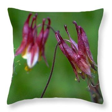 Wild Columbine - Aquilegia Canadensis Throw Pillow