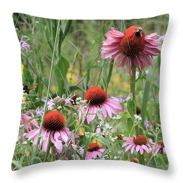 Wild Coneflowers Throw Pillow