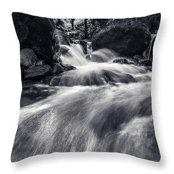 wild creek in Harz, Germany Throw Pillow