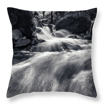 wild creek in Harz, Germany Throw Pillow
