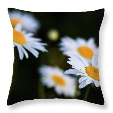 Throw Pillow featuring the photograph Wild Daisies by Cristina Stefan