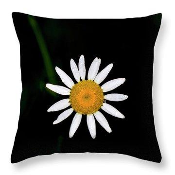 Throw Pillow featuring the digital art Wild Daisy by Chris Flees