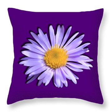Throw Pillow featuring the photograph Wild Daisy by Shane Bechler