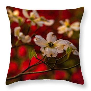 Wild Dogwood And Red Azaleas Throw Pillow