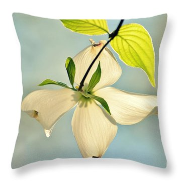 Wild Dogwood Bloom 2 Throw Pillow