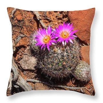 Wild Eyed Cactus Throw Pillow