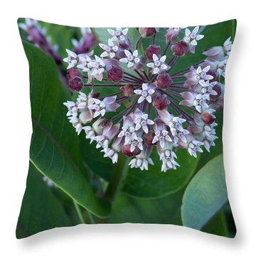 Wild Flower Star Burst Throw Pillow