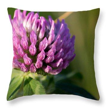 Wild Flower Bloom  Throw Pillow