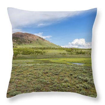 Throw Pillow featuring the photograph Wild Flowers And Grasses At Yellowstone by John M Bailey