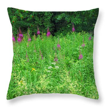 Wild Flowers And Shrubs In Vogelsberg Throw Pillow