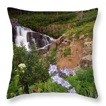Throw Pillow featuring the photograph Wild Flowers And Waterfalls by Steve Stuller