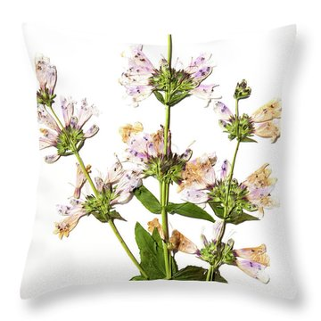 Wild Foxglove Throw Pillow