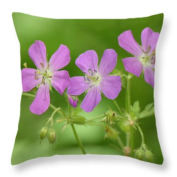Wild Geranium  Throw Pillow by Alan Lenk