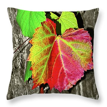 Throw Pillow featuring the photograph Wild Grape Vine By Kaye Menner by Kaye Menner