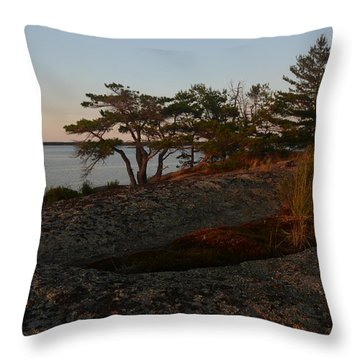 Wild Grass At Sunset - Georgian Bay Throw Pillow