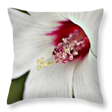 Wild Hibiscus Moscheutos_2a Throw Pillow
