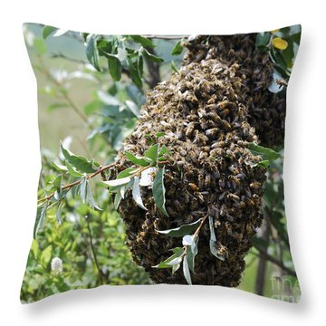Wild Honey Bees Throw Pillow