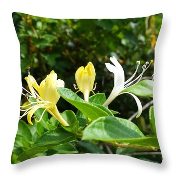 Wild Honeysuckles Throw Pillow