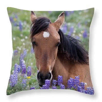 Wild Horse Among Lupines Throw Pillow