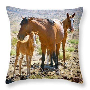 Wild Horse Family Throw Pillow