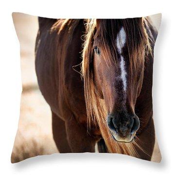 Wild Horse Watching Throw Pillow