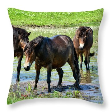 Wild Horses 4 Throw Pillow