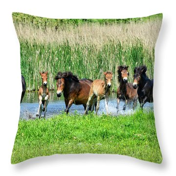Wild Horses 6 Throw Pillow