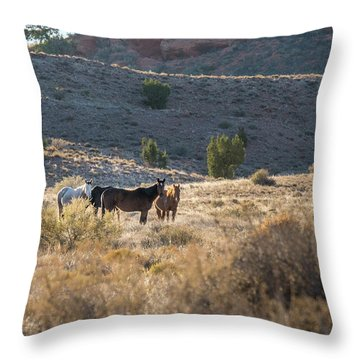 Throw Pillow featuring the photograph Wild Horses In Monument Valley by Jon Glaser