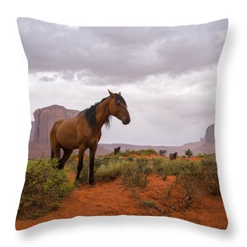Wild Horses Of Monument Valley Throw Pillow