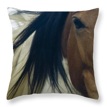 Throw Pillow featuring the photograph Wild Horses Of Nevada 1 by Catherine Sobredo