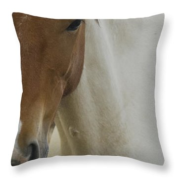 Throw Pillow featuring the photograph Wild Horses Of Nevada 3 by Catherine Sobredo