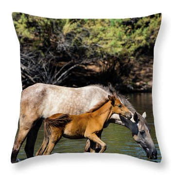 Wild Horses On The Salt River Throw Pillow