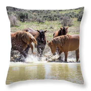 Wild Mustang Stallions Playing In The Water - Sand Wash Basin Throw Pillow