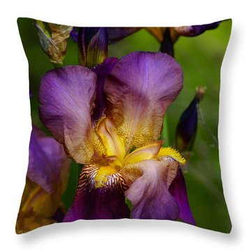 Throw Pillow featuring the photograph Wild Iris by Ben Upham III
