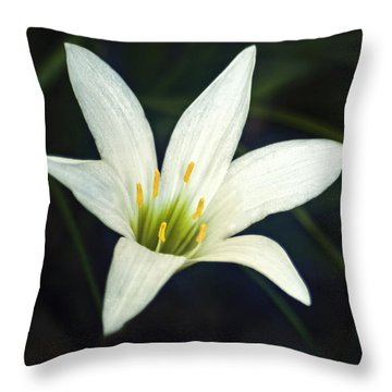 Wild Lily Throw Pillow by Carolyn Marshall
