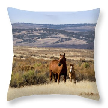 Wild Mare With Young Foal In Sand Wash Basin Throw Pillow