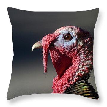 Wild Merriams Turkey Portrait  Throw Pillow