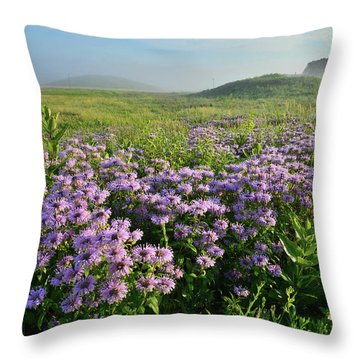 Wild Mints Galore In Glacial Park Throw Pillow