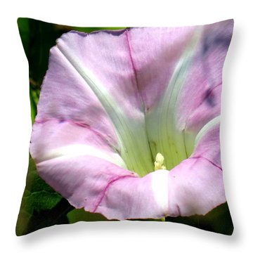 Wild Morning Glory Throw Pillow
