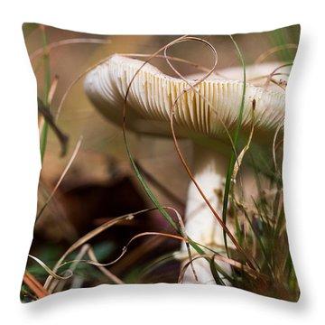 Portobello Mushroom Throw Pillows