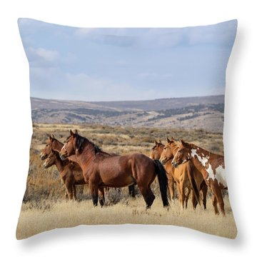 Wild Mustang Family Band In Sand Wash Basin Throw Pillow