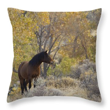 Wild Mustang Horse Throw Pillow
