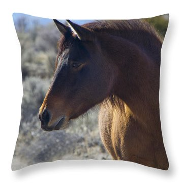 Wild Mustang Mare Throw Pillow