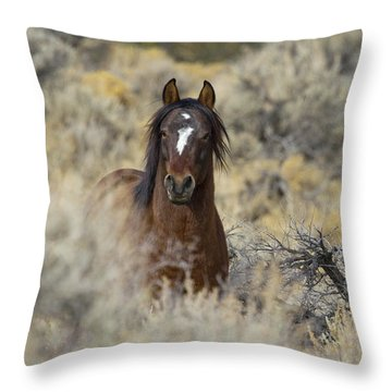 Wild Mustang Stallion Throw Pillow