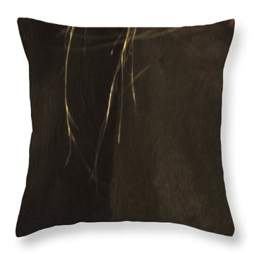 Wild Mustangs Of New Mexico 43 Throw Pillow