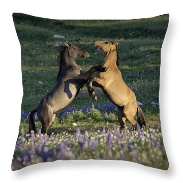 Wild Mustangs Playing 1 Throw Pillow