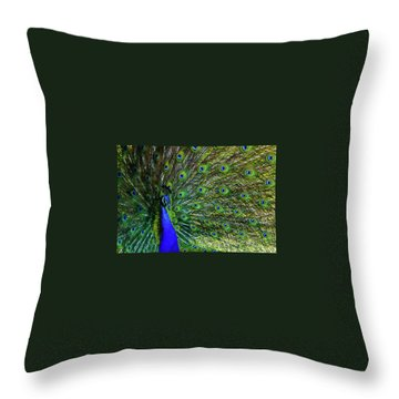 Wild Peacock Throw Pillow