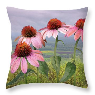 Wild Purple Coneflowers Throw Pillow