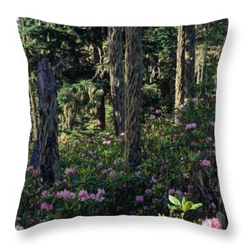 Wild Rhododendrons Mount Hood National Throw Pillow